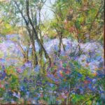 'Beneathe the Bulbs', ostlebury Woods